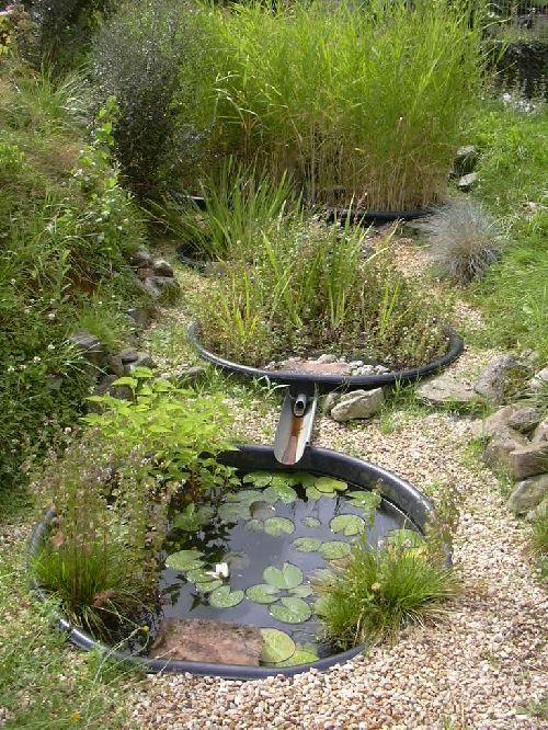 Le lagunage ou la phyto puration oser tre soi - Lagunage des eaux usees ...